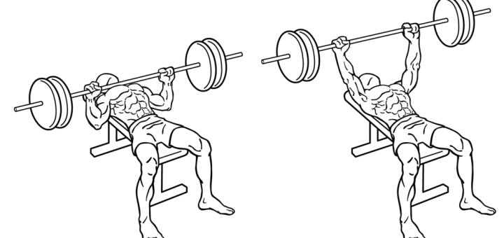 Best Compound Exercises